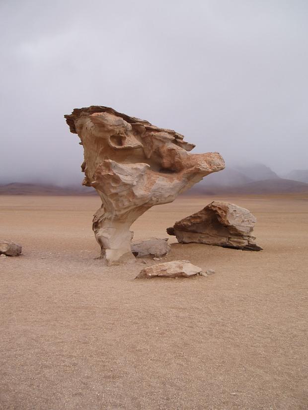 Arbol de Piedra- Rock Tree