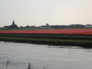 The tulip fields and canal