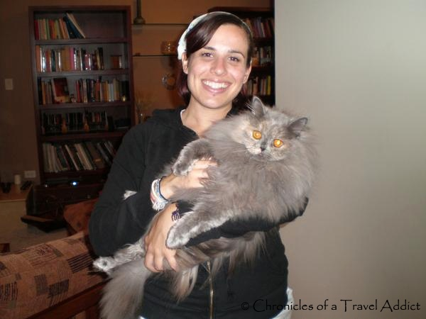 In Quito with my good friend's cat, Pulgas. Circa 2008.