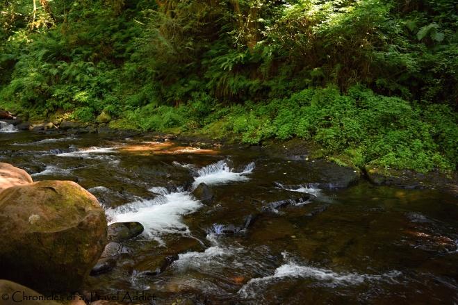 What Hiking Multnomah Falls Taught Me