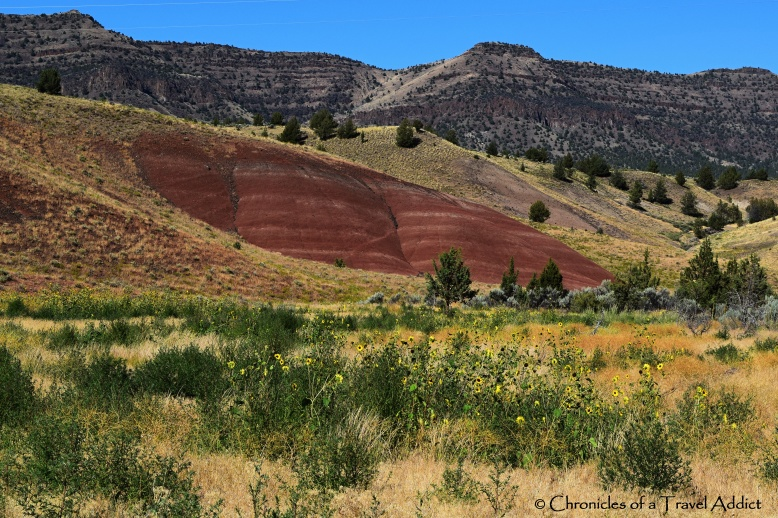 Our first view of the Painted Hills